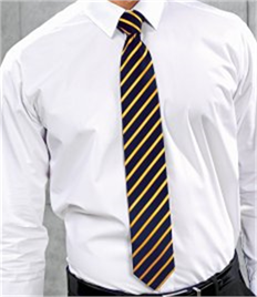 PREMIER WORKWEAR SPORTS STRIPE TIE
