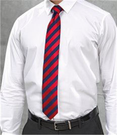 PREMIER WORKWEAR CLUB STRIPE TIE